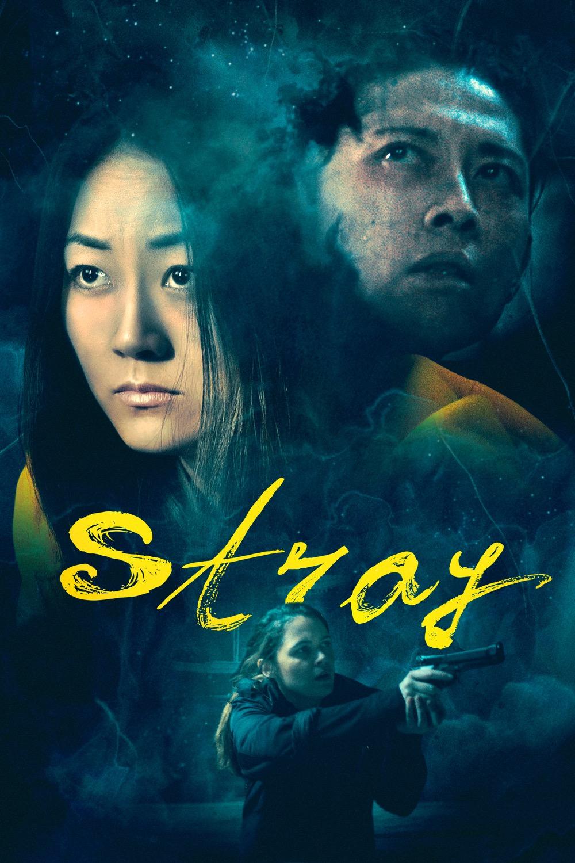 Stray   Films   Screen Media Films